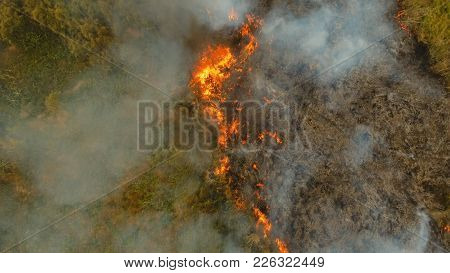 Aerial view forest fire on the slopes of hills and mountains. Forest and tropical jungle deforestation for human food farming and export. large flames from forest fire. Using fire to destroy natural habitat and causing large scale environmental damage in  stock photo