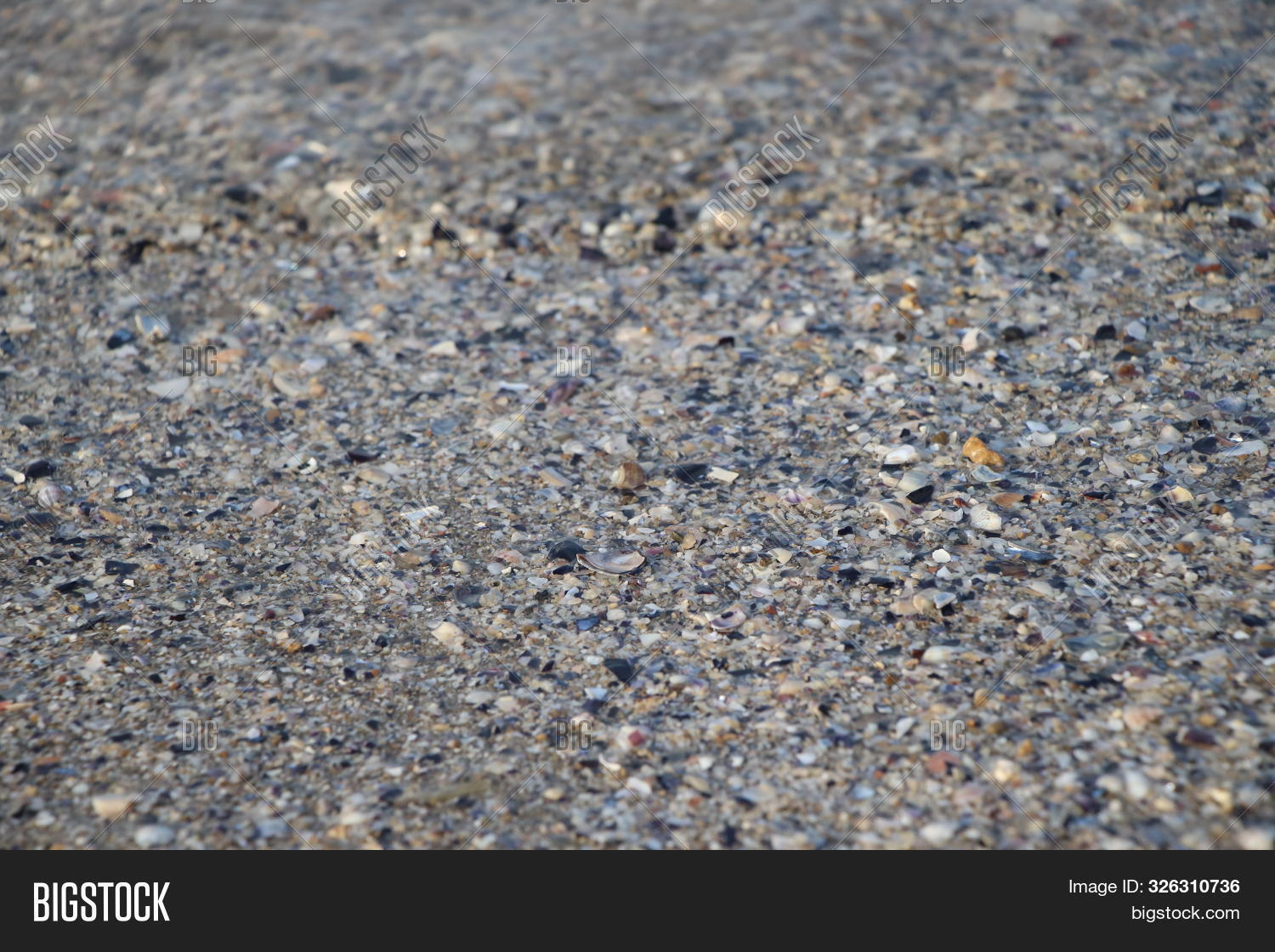 abstract,adriatic,backdrop,background,beach,close-up,closeup,coast,coastline,glass,gravel,green,grunge,marine,natural,nature,ocean,outdoor,pebble,rock,rough,sand,sandy,scattered,sea,seashell,seashore,seaside,shape,shell,shore,small,stone,structure,summer,surface,texture,textured,tourism,travel,triangle,vacation,water,wet