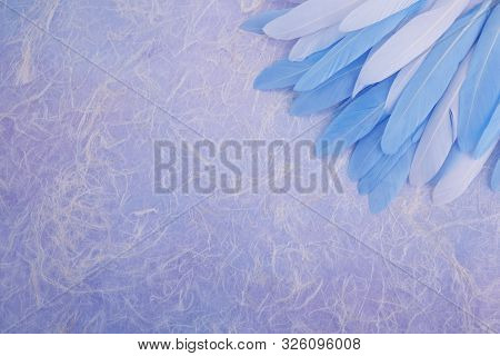 Angel Healing. Feather in the right corner on multi colored background. Top view stock photo
