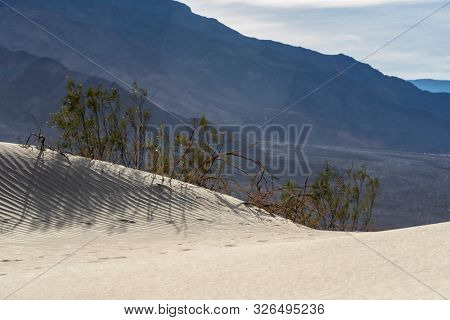 Scenic views of an American Desert stock photo
