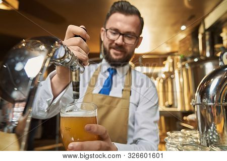 Handsome barman in brown apron pouring lager beer in cold glass. Adult, positive worker of mini brewery in white shirt holding glass. Concept of brewing and trading beer. stock photo