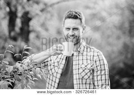 Green tea plantation. Whole leaf tea. Excellent taste. Enjoy hot beverage. Natural drink. Healthy lifestyle. I prefer green tea. Refreshing drink. Man bearded tea farmer hold mug nature background stock photo