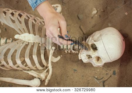 Human fossil discovered concept. Woman hand is using brush to sweep artificial bones fossil in sand. stock photo