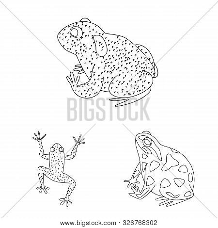 Vector illustration of amphibian and animal symbol. Set of amphibian and nature vector icon for stock. stock photo