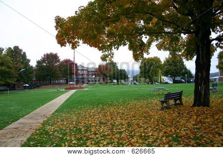 A scene in early fall on a college campus with green grass and colorful fall leaves.  Has the appearance of a nice park setting with a park bench. stock photo