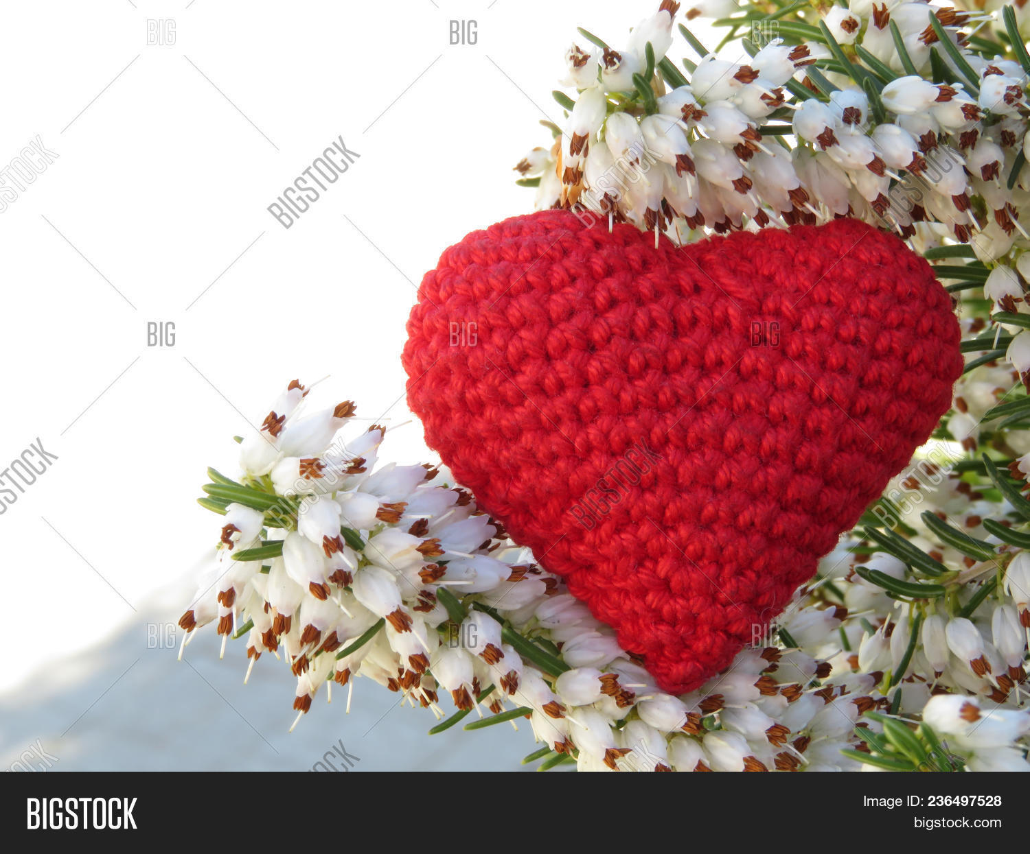 Love Heart And White Heather Flowers Red Knitted Heart Romantic