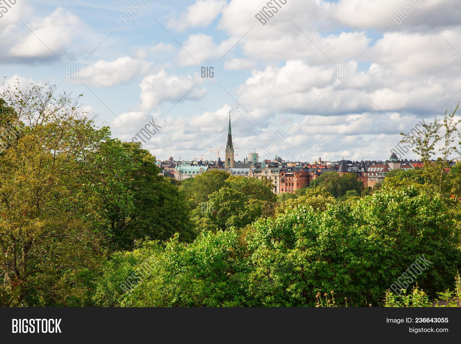 Djurgarden,architecture,blue,building,capital,city,cityscape,cloud,cloudy,europe,european,exterior,facade,famous,green,home,house,island,landscape,leaves,nature,outdoor,panorama,red,scandinavia,scandinavian,scenery,scenic,sightseeing,sky,spire,steeple,stockholm,summer,sunlight,sweden,swedish,top,tourism,tower,town,townscape,travel,tree,urban,view