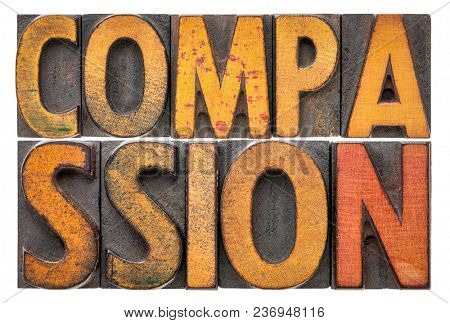 compassion - isolated word abstract in vintage letterpress wood type stock photo