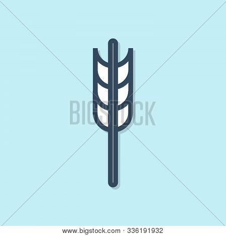 Blue line Cereals set with rice, wheat, corn, oats, rye, barley icon isolated on blue background. Ears of wheat bread symbols. Vector Illustration stock photo