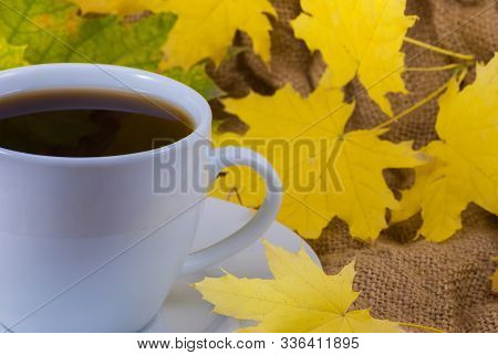 Autumn composition. Cup of coffee, dried leaves background. Autumn elegant concept. Close up stock photo
