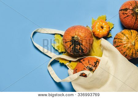 Ripe Pumpkins in a shopping bag and yellow autumn leaves on a blue background. Harvest concept, Thanksgiving day, cook food, autumn. Flat lay, top view stock photo