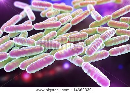 Bacteria Lactobacillus, gram-positive rod-shaped lactic acid bacteria which are part of normal flora of human intestine are used as probiotics and in yoghurt production, 3D illustration