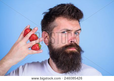 Man beard hipster strawberries fingers blue background. Mostly carbohydrates sucrose fructose glucose. Carbohydrate content strawberry. Strawberries safest fruit for sugar levels. Metabolic disease. stock photo
