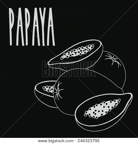 Isolate papaya fruit as chalk on blackboard. Close up clipart in chalkboard style. Hand drawn icon stock photo