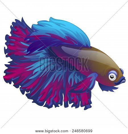 Cartoon blue betta fish, siamese fighting fish, betta splendens isolated on white background. stock photo