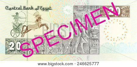 20 egyptian pound bank note full frame reverse stock photo