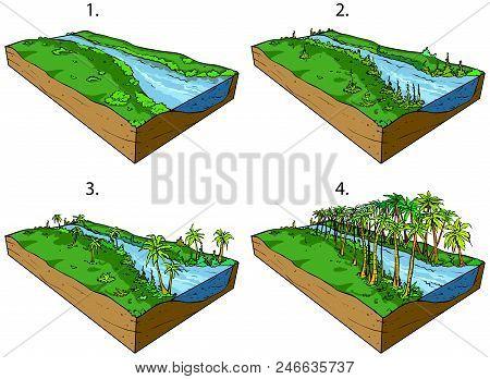 Vector illustration of developing living plants world in Paleozoic. stock photo