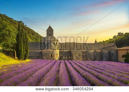 Abbey of Senanque and blooming rows lavender flowers panoramic view at sunset. Gordes, Luberon, Vaucluse, Provence, France, Europe. stock photo