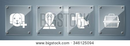 Set Pet carry case, Veterinary clinic symbol, Map pointer with veterinary medicine hospital and Veterinary clinic symbol. Square glass panels. Vector stock photo