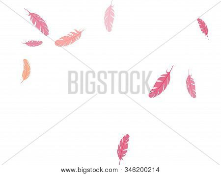 Abstract pink flamingo feathers vector background. Angel wing plumage concept. Decorative confetti of festive plumelet. Detailed majestic feather on white design. stock photo