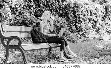 Woman student work with notebook. Learn study explore. Surfing internet. Modern student life. Regular student. Girl adorable student with laptop and coffee cup sit bench in park. Study outdoors stock photo