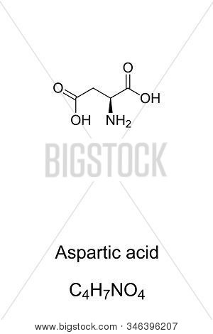 Aspartic acid molecule, skeletal formula. Structure of Asp, C4H7NO4. Ionic form known as aspartate. Neurotransmitter. Compound for the production of aspartame. Structural formula. Illustration. Vector stock photo