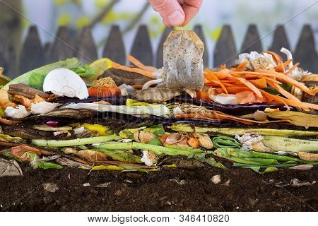 Male hand adding a biodegradable teabag to a colorful compost heap consisting of rotting kitchen leftovers stock photo