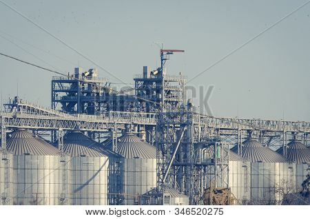 Cylindrical silos for grain storage. Modern Grain Terminal. Elevator. Grain storage and processing. Logistics. Sunny autumn day. Without people. stock photo