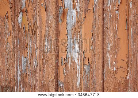 Faded wooden boards with corrosion. Cleaned wooden doors from several planks. Old natural wooden board without paint. Wooden background, copy space. stock photo