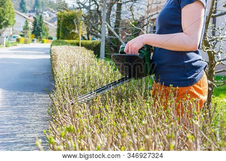 Female Gardener Trimming Green Bush Fence With Electric Hedge Clippers.