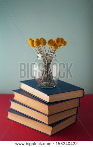 Stack of blue books and flowers Craspedia stock photo