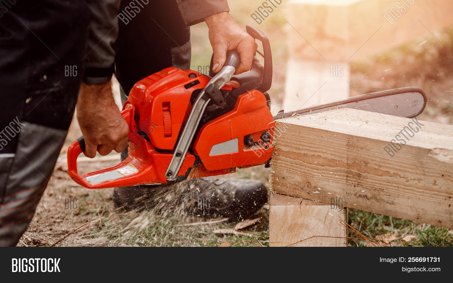 action,adult,arborist,axe,axeman,banner,beard,blade,brown,builder,building,chain,chainsaw,climber,craftsmanship,cut,cutting,dust,electric,equipment,feller,felling,firewood,forest,hand,handyman,helmet,house,human,industrial,industry,job,log,lumberjack,lumberman,machine,man,outdoors,pine,power,professional,saw,timber,tool,tree,wood,woodsman,work,worker,workwear