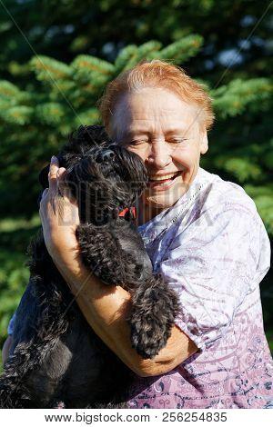 Portrait of an elderly woman hugging black dog Zwergschnauzer stock photo