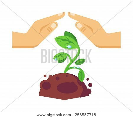 Protection of environment, careful attitude to nature and natural resources. stock photo