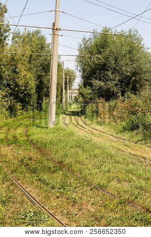 Railway rails pass through the forest. The old iron, tram road overgrown with grass in the forest. Beautiful view of the tracks for the railway train stock photo