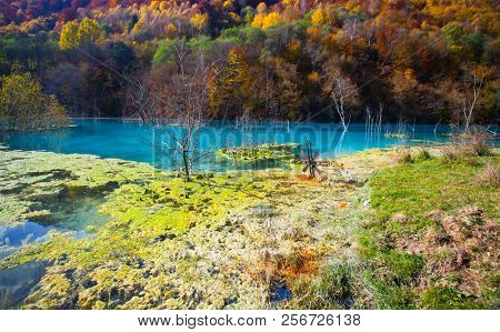 Flooded cemetery next to drowned village at Geamana lake near gold mine of Rosia Montana. Cyanide pollution, turquoise water, ecological disaster, polluted lake with mining residuals stock photo