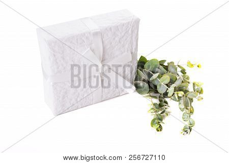White paper wrapped gift box with green leaves decoration stock photo