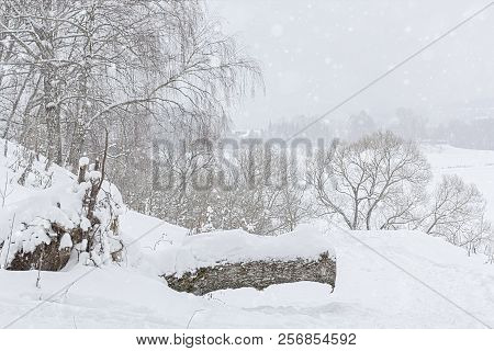 Picturesque landscape with a snow-covered river bank. Snowfall in a dull winter day stock photo