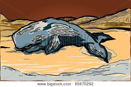 A vector illustration of a whale washed up on shore. stock photo
