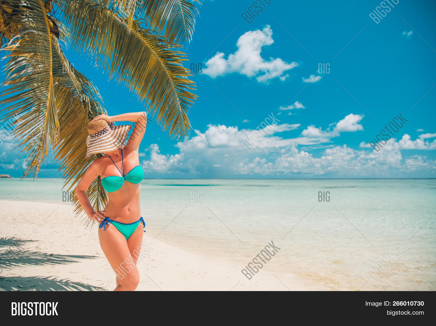 active,adult,attractive,beach,beautiful,beauty,blue,body,carefree,caucasian,coast,couple,female,freedom,fun,girl,happiness,happy,health,healthy,holiday,joy,leisure,lifestyle,love,man,nature,ocean,outdoors,people,person,relax,relaxation,sand,sea,sky,summer,sun,sunlight,sunny,sunset,together,travel,tropical,vacation,water,wellness,white,woman,young