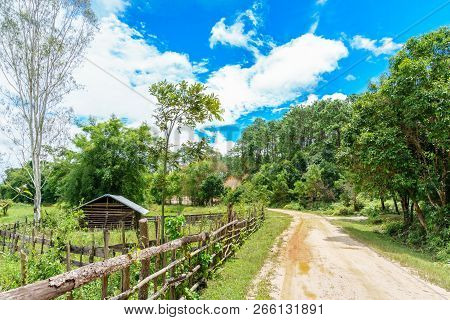 Peasant hut. Laos. The Province Of Xieng Khouang. stock photo