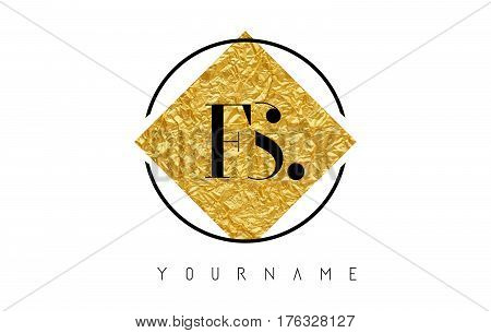 FS Letter Logo with Golden Foil Texture and Rounded Black Shape. stock photo