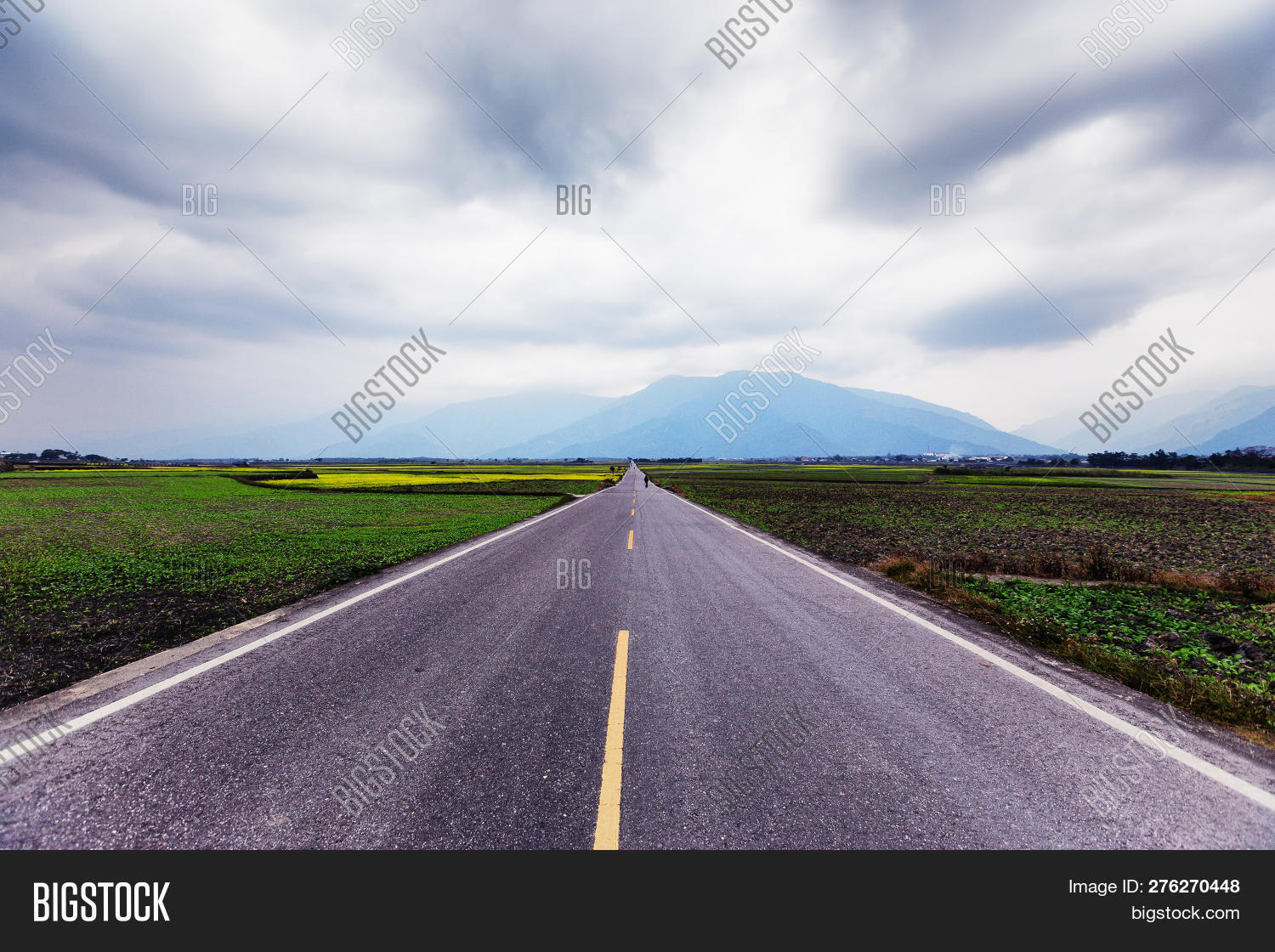 ahead,asphalt,background,center,cloud,country,course,day,direct,direction,drive,empty,field,footpath,forward,freedom,future,going,grass,green,highway,horizon,journey,landscape,line,linear,long,middle,mountain,moving,nature,nobody,open,path,pathway,perspective,road,route,rural,scenic,sky,straight,travel,trip,view,walk,walkway,way