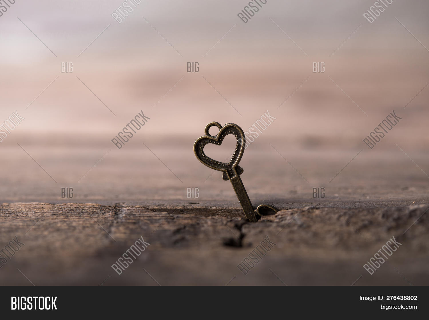 14,aged,background,beautiful,celebration,closeup,concept,copy,day,decoration,design,gift,gold,golden,heart,holiday,isolated,key,lock,love,marriage,married,metal,nobody,object,old,open,passion,protection,red,relationship,retro,romance,romantic,rusty,safety,security,shape,space,spirituality,symbol,texture,unlock,valentine,vintage,wedding,white,wood,yellow
