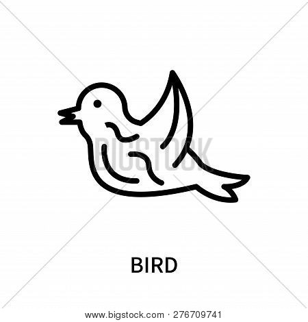 Bird icon isolated on white background. Bird icon simple sign. Bird icon trendy and modern symbol for graphic and web design. Bird icon flat vector illustration for logo, web, app, UI. stock photo