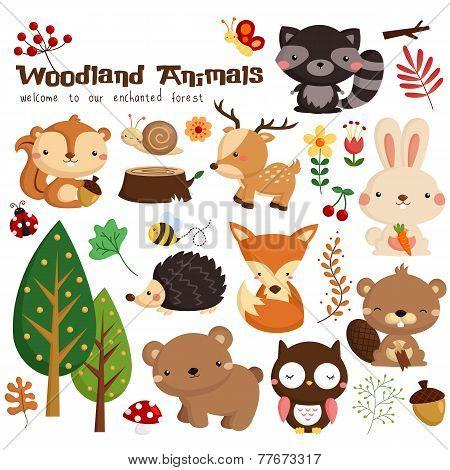 Animal woodland vector set