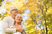 family, age, season and individuals idea - upbeat senior couple embracing over harvest time trees fo