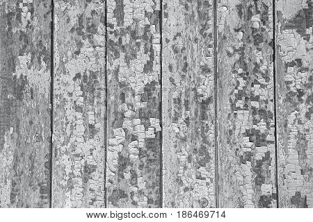 Cracking and peeling blue paint on a wall. Vintage wood background with peeling paint. Old board with Irradiated paint stock photo