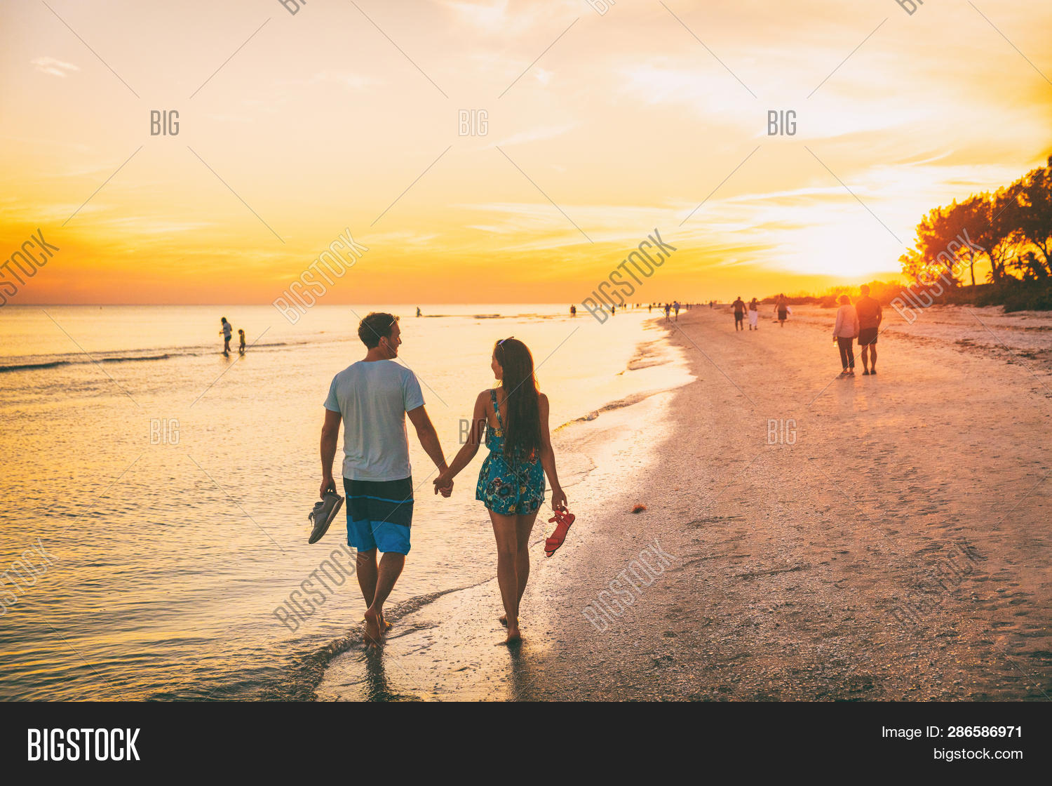adults,american,barefoot,beach,captiva,caribbean,couple,family,florida,fort myers,girl,gulf,hands,happy,holding,holiday,honeymoon,island,lifestyle,lovers,man,men,mexico,nature,ocean,people,relaxing,romantic,sanibel,sea,shelling,shoes,silhouettes,south,stroll,summer,sun,sunset,thailand,tourists,travel,two,usa,vacaction,vacation,vacations,walk,woman,women
