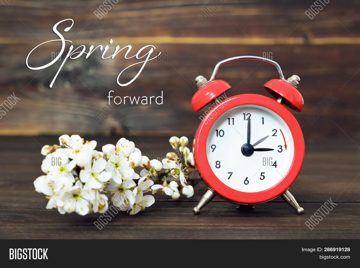 Daylight,alarm,background,bloom,blossom,branch,change,clock,concept,dst,face,flowers,forward,hour,minute,red,retro,saving,season,set,spring,summer,summertime,time,tree,turn,twig,vintage,watch,white,wooden